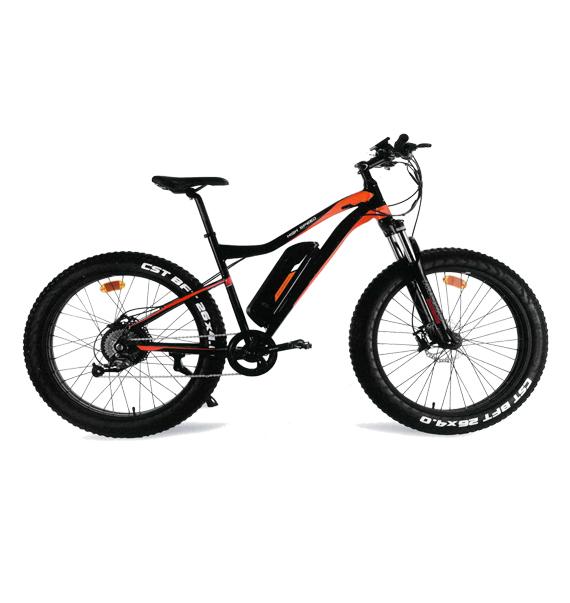 Nama Bike - Eroica