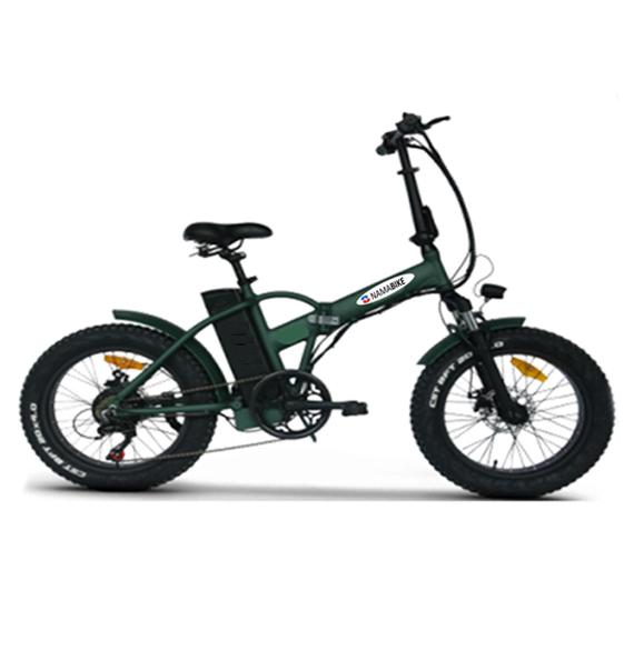Nama Bike - Evergreen Man
